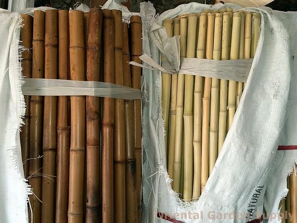 Bamboo - Pole