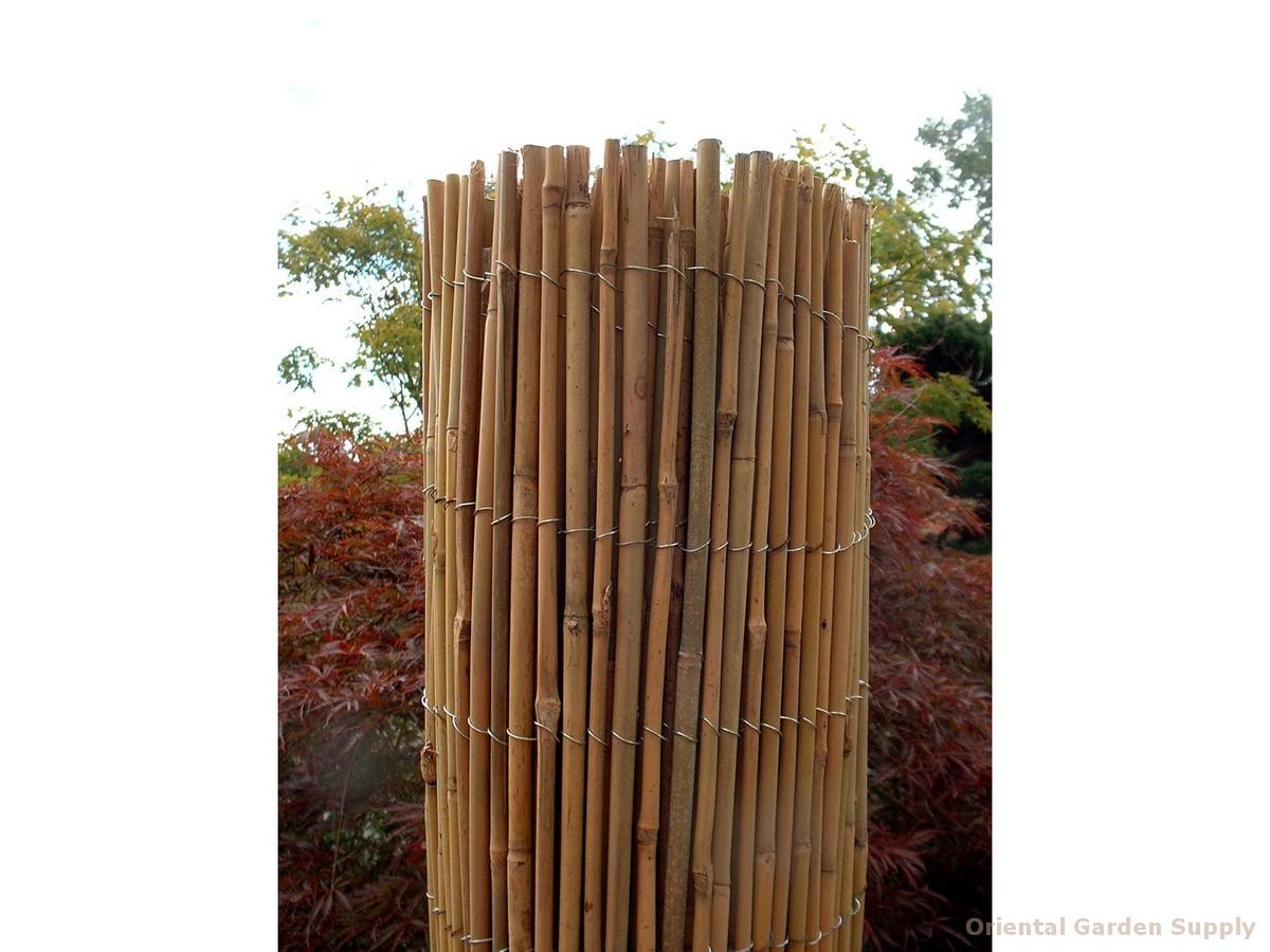 Cane Fence