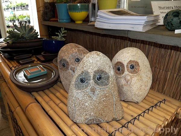 Granite Owl