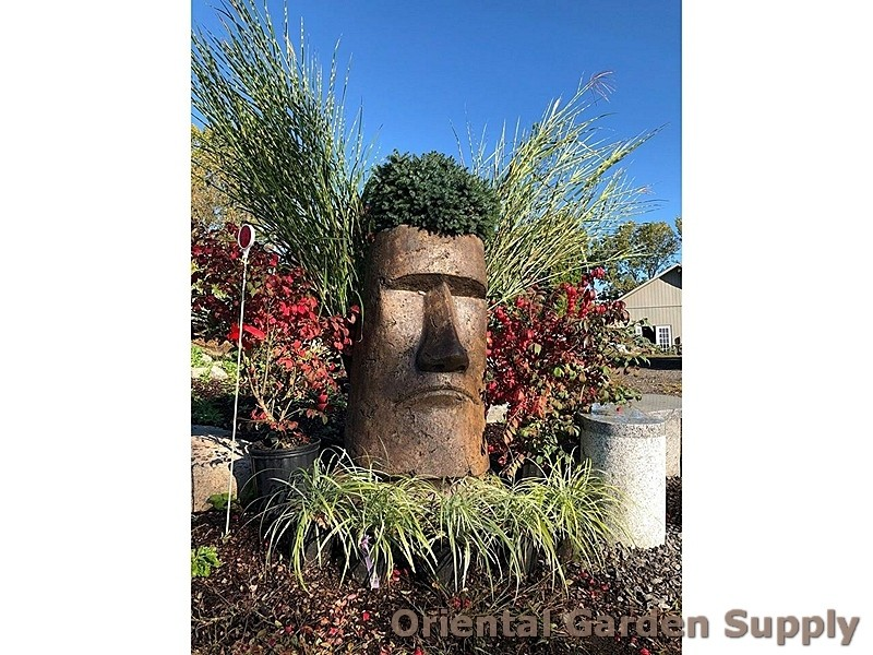 Giant_Rapa_Nui