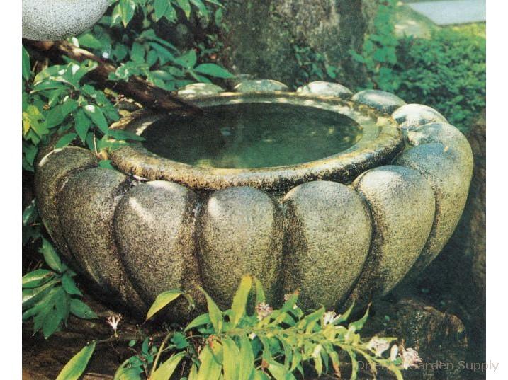 Lotus Basin