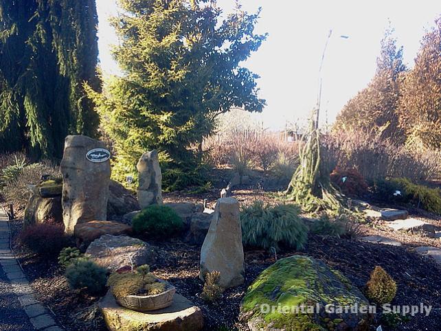 Oregon Garden 2014-02-05 13.05.39