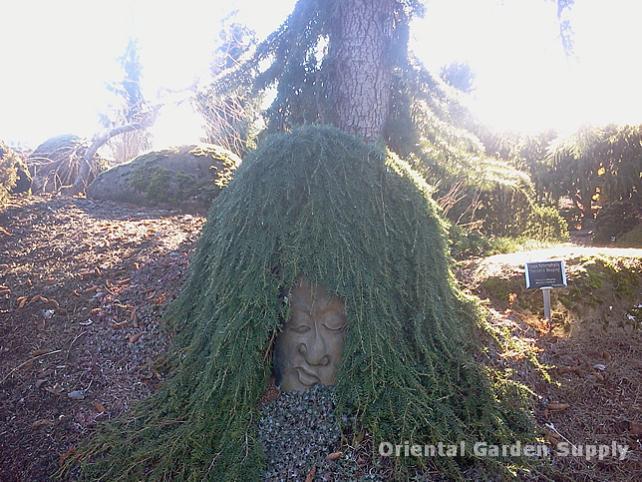 Oregon Garden 2014-02-05 13.28.45